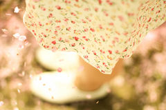 spódnica Zdjęcia Stock