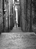 Spöka Edinburg arkivbild