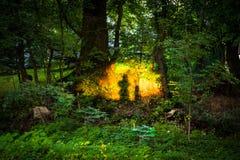 Spökar skuggor på solnedgången Royaltyfria Bilder