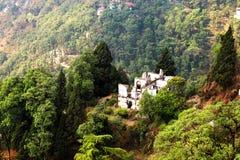 Spökat hus i bergig skog royaltyfri foto