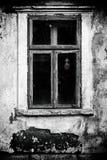 Spöke för kvinna` s på grungefönstret Royaltyfri Foto