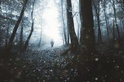 Spöke i mörk skog med dimma Fotografering för Bildbyråer