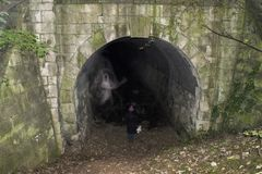 Spöke Mexborough Ragger Cadeby för järnväg tunnel royaltyfri foto