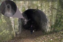 Spöke Mexborough Ragger Doncaster Cadeby för järnväg tunnel royaltyfri illustrationer