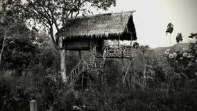 Spökebungalow i djungel arkivfoton