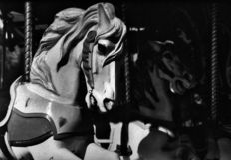 spökehästar Fotografering för Bildbyråer
