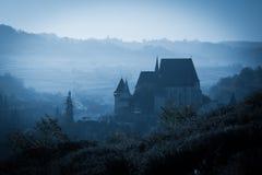 Spöklik dimmig regnig skog Fotografering för Bildbyråer
