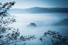 Spöklik dimmig regnig skog Royaltyfria Foton
