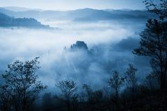 Spöklik dimmig regnig skog arkivfoton
