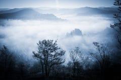 Spöklik dimmig regnig skog Royaltyfri Fotografi