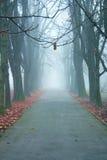spöklik ensam väg Arkivbild