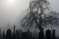 Spöklik gammal kyrkogård Royaltyfri Fotografi