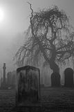 Spöklik gammal kyrkogård Arkivbild