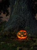 spöklik halloween natt Arkivbild