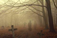 Spöklik kyrkogård i skog royaltyfri foto