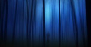 spöklik mörk skog