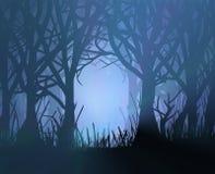 spöklik mörk skog Royaltyfri Fotografi