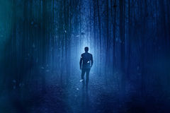 spöklik skog Royaltyfri Bild