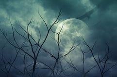 Spöklik skog med fullmånen, döda träd, allhelgonaaftonbakgrund royaltyfria foton