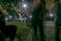 Spöklik syn på trädfilial på Pasir Ris parkerar Singapore arkivbild