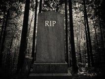 Spöklika Forest Gravestone royaltyfri foto