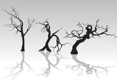 Spöklika vinterTrees Royaltyfria Foton