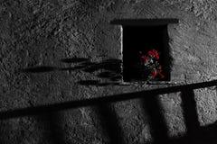 Spöklikt fönster på natten Skräck- och sinnesrörelsebegrepp royaltyfria bilder