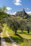 Spökstaden Craco i Basilicata, Italien Royaltyfria Bilder