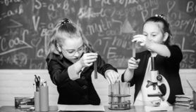 Sp?nnande flickaskolalikformig bevisa deras hypotes Gymnastiksalstudenter med den djupg?ende studien av naturvetenskaper arkivfoto