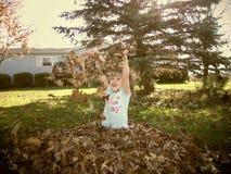 Spaß in den Fall-Blättern stockbild