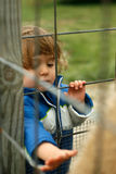 Spaß am Petting Zoo. Lizenzfreies Stockbild