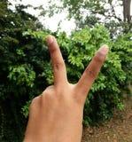 Spaßhaltung mit 2 Fingern Lizenzfreies Stockfoto