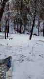 Spaßschneetag im Wintermärchenland stockfotografie