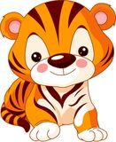 Spaßzoo. Tiger Stockfotografie