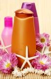 SPA, ένας aromatherapy, μασάζ Στοκ Εικόνα