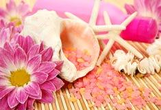 SPA, ένας aromatherapy, μασάζ Στοκ εικόνα με δικαίωμα ελεύθερης χρήσης