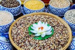 SPA, επίστρωμα ρυζιού με το φυσικό χορτάρι στο κύπελλο Στοκ Εικόνα