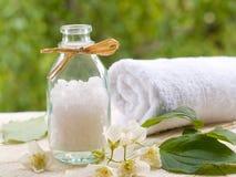 SPA και aromatherapy σύνολο Στοκ εικόνες με δικαίωμα ελεύθερης χρήσης