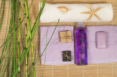 SPA και Wellness που θέτουν με το φυσικό σαπούνι, μπαμπού πετσετών πετρών Στοκ Εικόνες