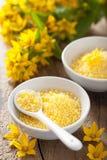 SPA με τα κίτρινα βοτανικά μαργαριτάρια και τα λουλούδια λουτρών Στοκ Φωτογραφίες