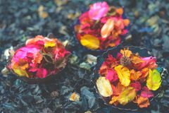 SPA που θέτει με τα φυσικά σαπούνια και το λουλούδι για aromatherapy Στοκ φωτογραφίες με δικαίωμα ελεύθερης χρήσης