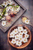 SPA Σύνολο για την προσοχή σωμάτων και aromatherapy Στοκ Εικόνες