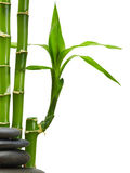 Spa. Bamboo stem ,leaves and stones Stock Photo