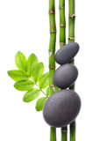 Spa. Bamboo stem ,leaves and stones Royalty Free Stock Photos