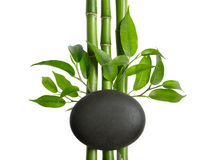 Spa. Bamboo stem ,leaves and stones Stock Photography