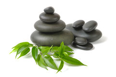 Spa. Green leaves ,flower and zen  stones Stock Photography