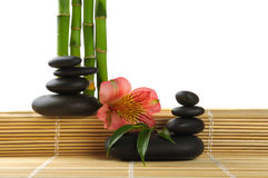 Spa. Bamboo stem ,flower and zen  stones Royalty Free Stock Photos