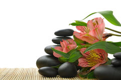 Spa. Bamboo stem ,flower and zen  stones Stock Photo