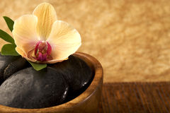 At the Spa. Massage stones and flower, copy space Royalty Free Stock Image