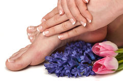 Spa. Pedicured feet, manicured hands and aromatic flowers in a spa Royalty Free Stock Photo